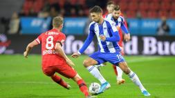 Hertha BSC und Sportwettenberater.com